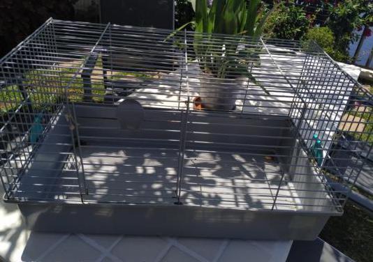Jaula para cobayas y conejos