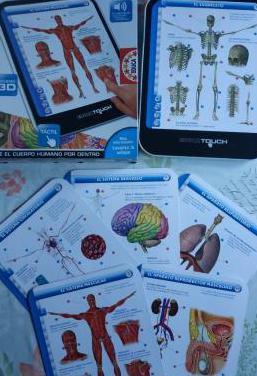 Nuevo cuerpo humano educa touch