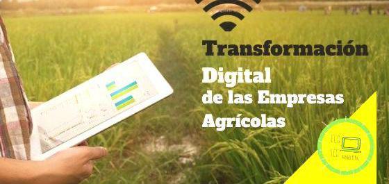 Transformación digital en Cádiz