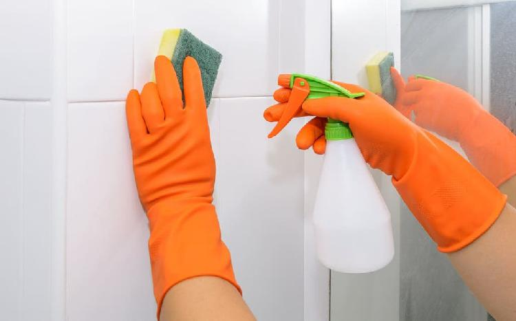 Chica para limpieza, responsable y económica