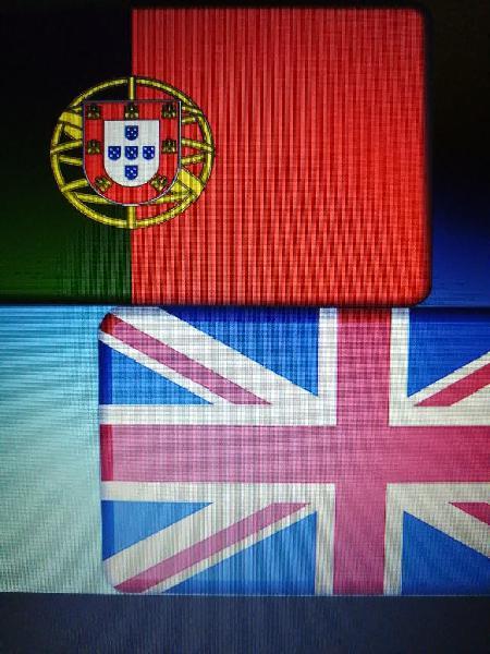Particulares de inglés y portugués