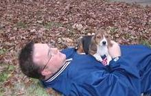 Tu precioso beagle