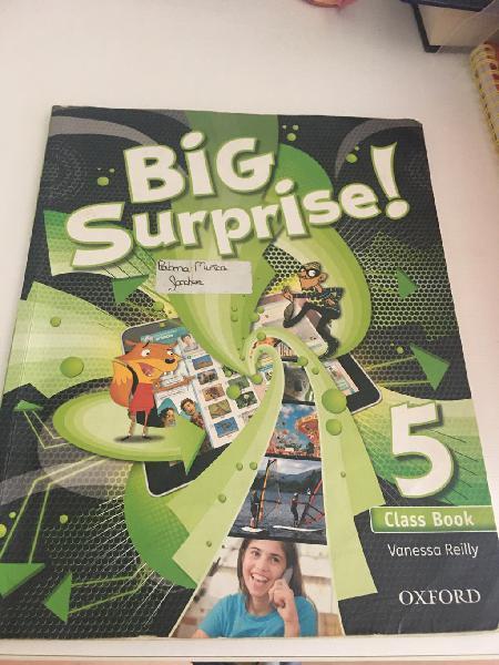 Class book big surprise 5º primaria oxford