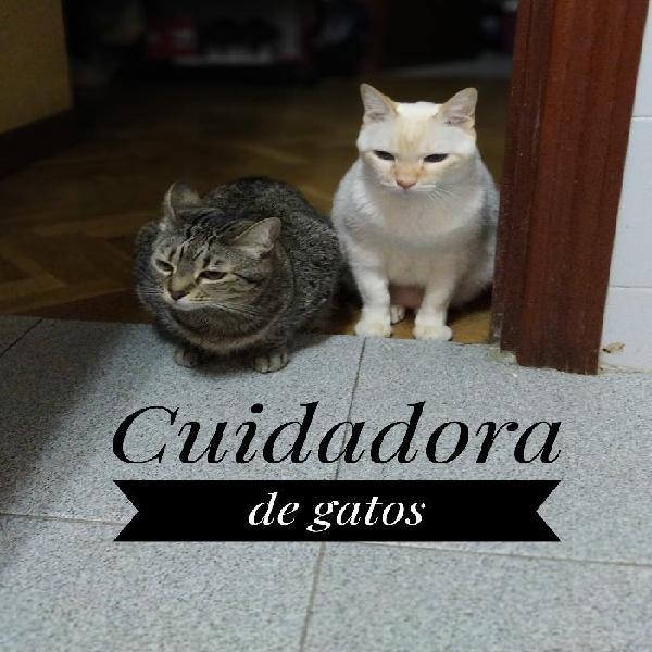 Cuido gatos a domicilio