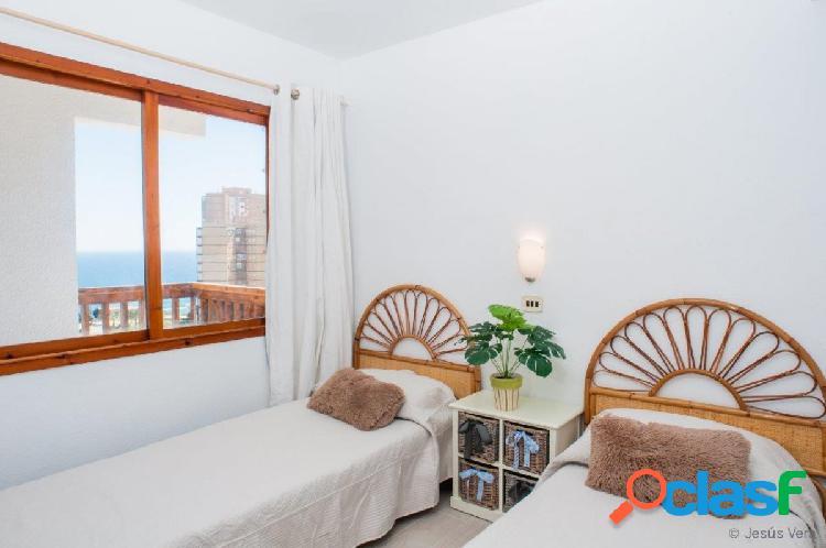 Apartamento reformado en campoamor: 1 hab, 1 baño, vistas despejadas
