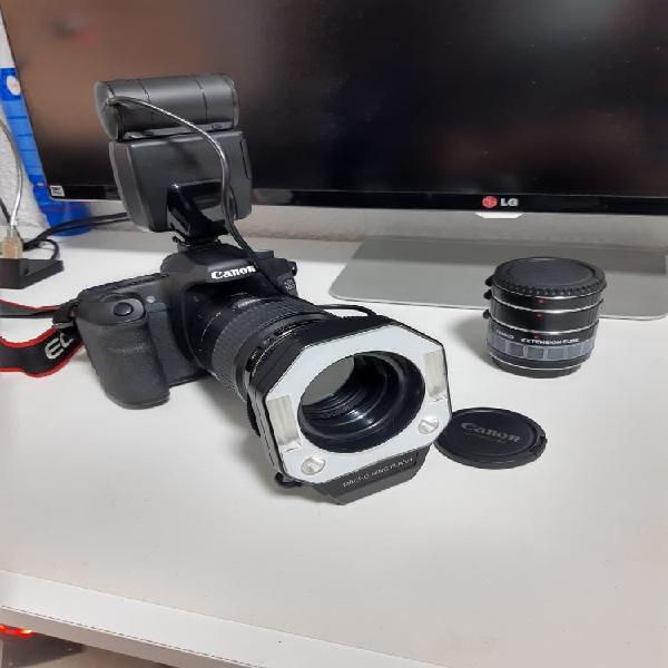 Canon eos 50 d, canon ef 100 mm macro 2.8 usm