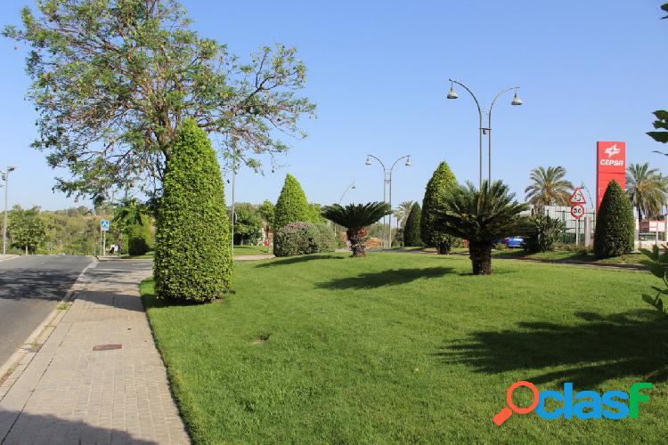 Solar urbano en Centro de Alcalá de Guadaíra 2
