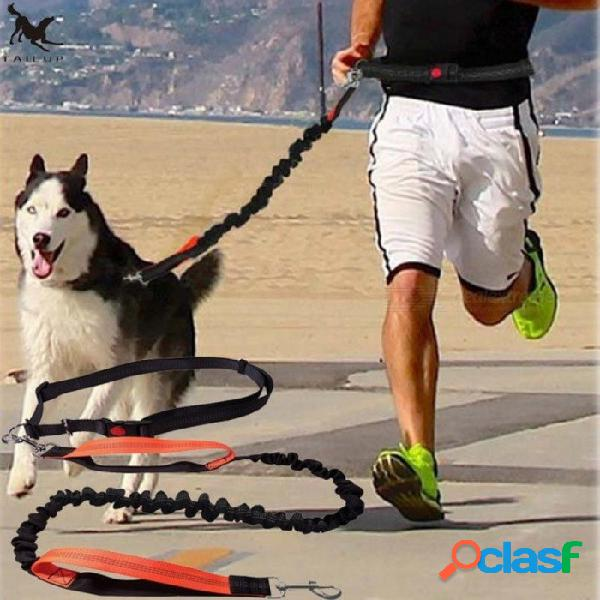 Correa para perros correr con elasticidad con la mano libremente productos para mascotas correa para perros correa para correr y correa para la cintura ajustable l / espalda y naranja