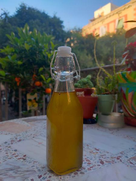Aceite de cañamo prensado en frío roble 250 ml