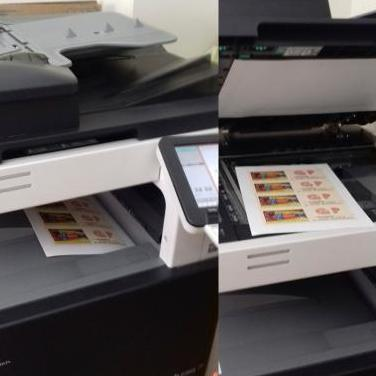 Fotocopiadora konica minolta bizhub c253
