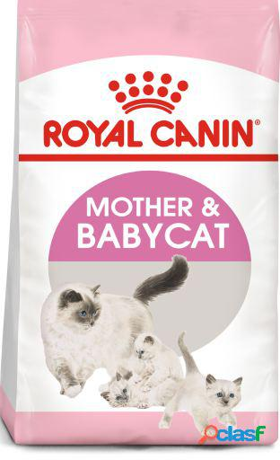 Royal canin mother&babycat 4 kg