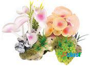 Classic for pets coral stone/anemone