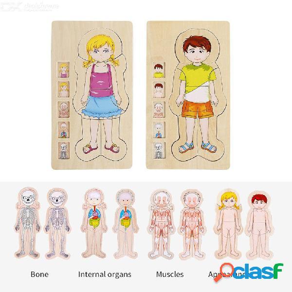 Rompecabezas de madera educativos para rompecabezas de aprendizaje del cuerpo humano de niños pequeños