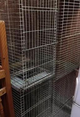 Jaulas para conejos de engorde