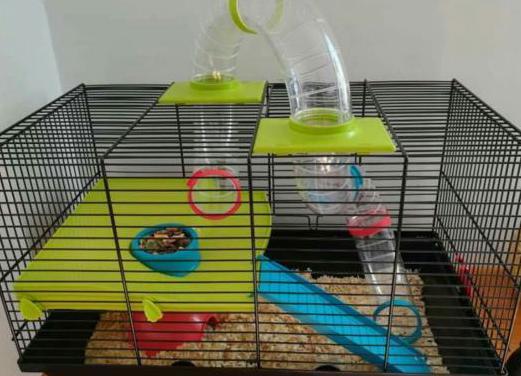 Jaula para roedores con todos los accesorios