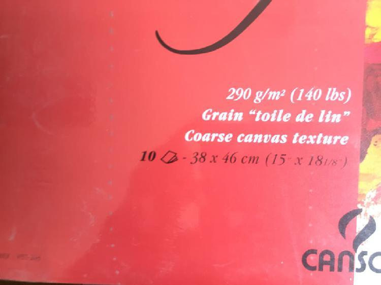 Bloc de papel oleo/acrílico canson 290 gr/m2 38x46
