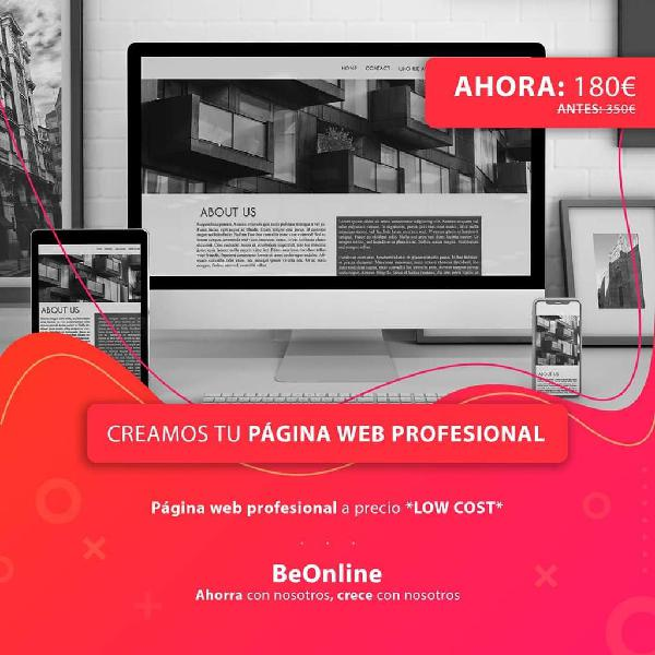 Página web profesional *oferta