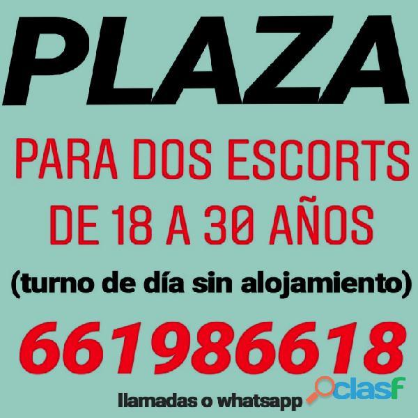 Plaza para escorts de 18 a 30 años