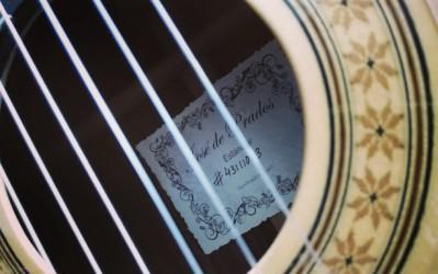 Clases particulares online/presencial de guitarra