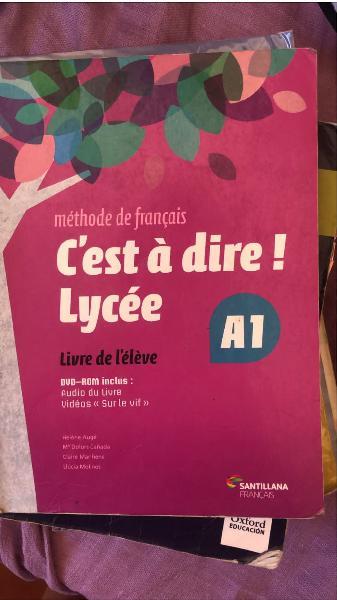 Libro francés 1 bach a1 editorial santillana