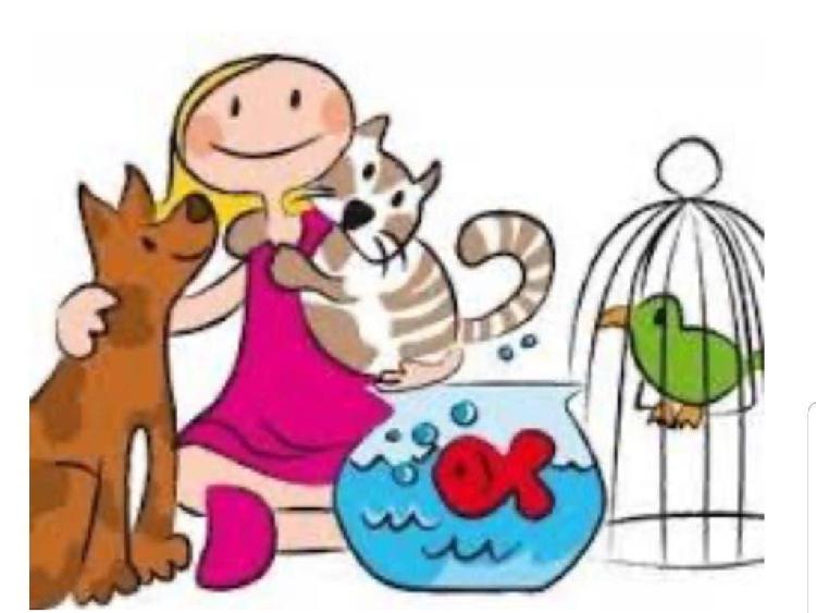 Cuidadora de mascotas!!!