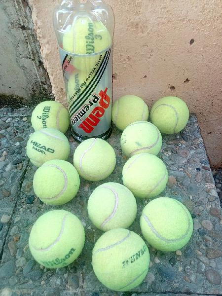 Lote 15 pelotas tenis o pádel mascotas en perfecto