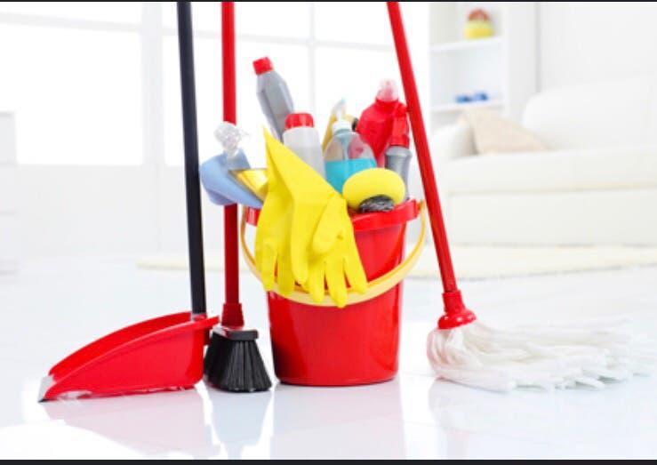 Niñera y empleada del hogar