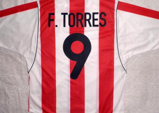 Camiseta fútbol atleti fernando torres