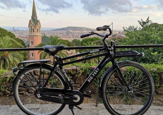 Bicicleta holandesa de paseo y transporte