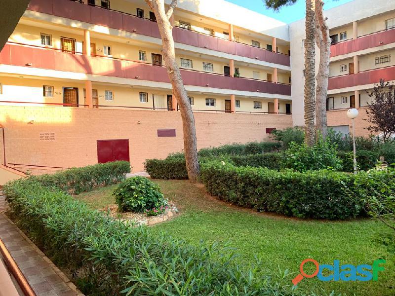Apartamento a 350m de la playa mil palmeras