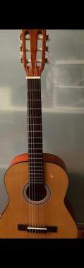 Guitarra jose torres (cadete) con funda