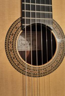 Guitarra vicente carrillo pasión