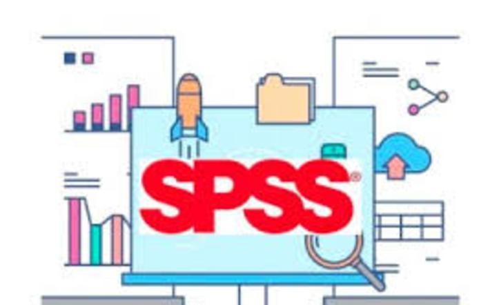 Apoyo, y docencia on line, presencial apara ayudar con spss