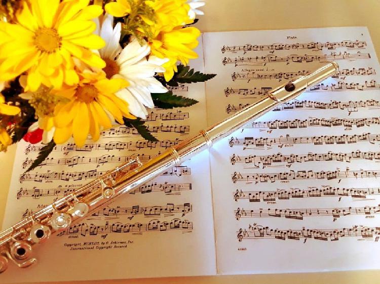 Clases de flauta travesera y lenguaje musical