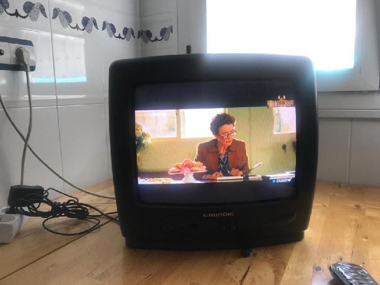 Televisión 14'' grundig + tdt