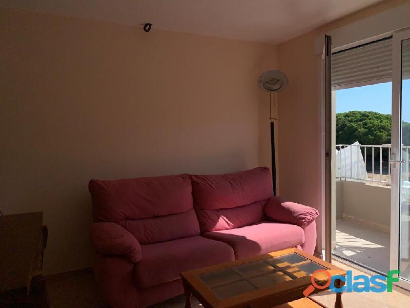 Apartamento con Vistas a la Piscina a un paso de la Playa, La Mata 8