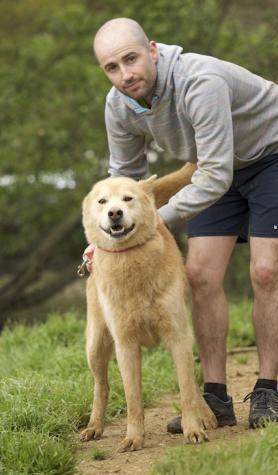 Pastor - perro en adopción
