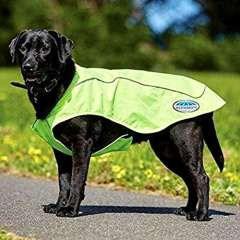 Abrigo reflectante de ejercicio para perros color amarillo
