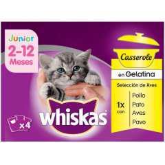 Pack whiskas junior casserole aves