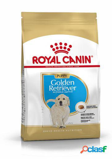Royal canin pienso golden retriever junior 3 kg