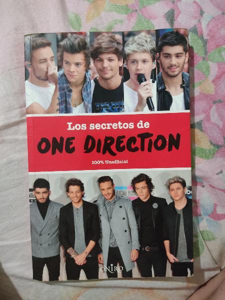 Los secretos de one direction libro