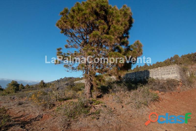 ID 420 Una buena extensión de terreno en Puntagorda en una zona tranquila y soleada, con vistas de 1