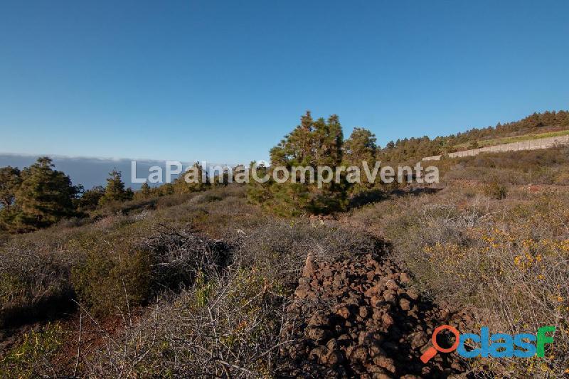 ID 420 Una buena extensión de terreno en Puntagorda en una zona tranquila y soleada, con vistas de 3
