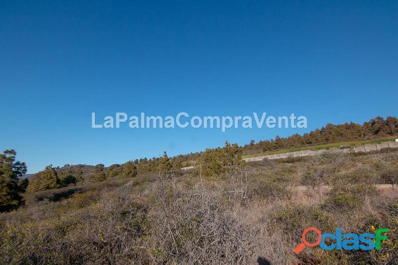 ID 420 Una buena extensión de terreno en Puntagorda en una zona tranquila y soleada, con vistas de 4