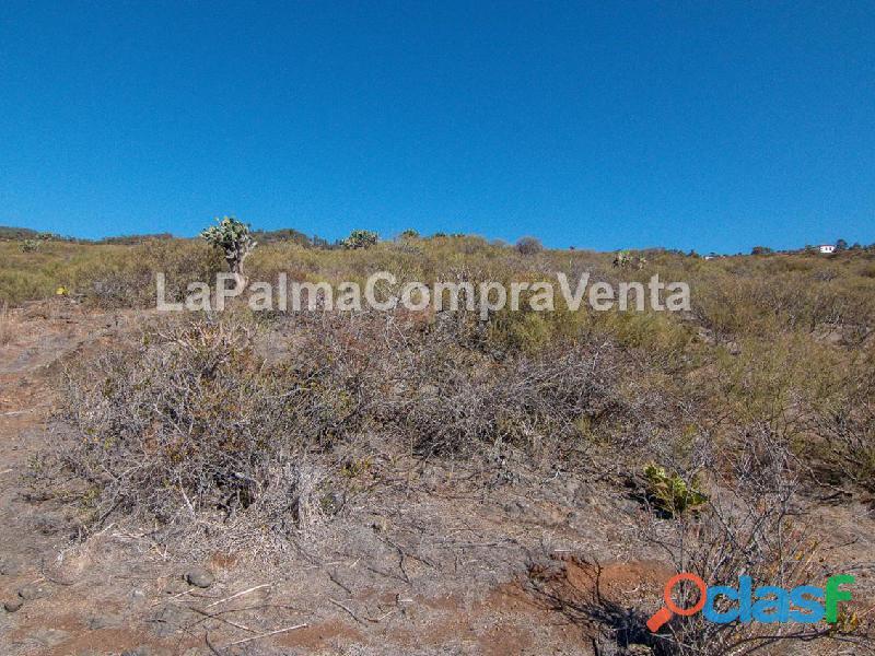 ID 424 Gran terreno en la zona noroeste de la isla de la Palma, en Lomada Grande Garafia, con una m 3