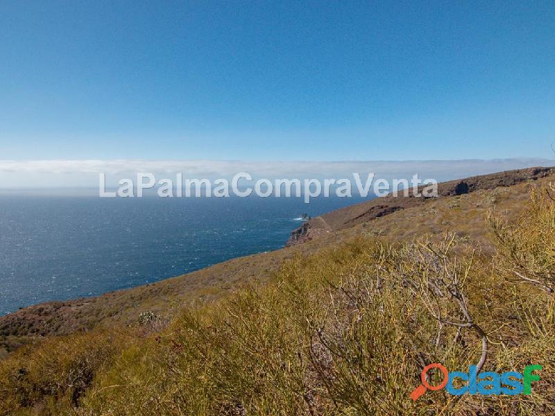 ID 424 Gran terreno en la zona noroeste de la isla de la Palma, en Lomada Grande Garafia, con una m 4