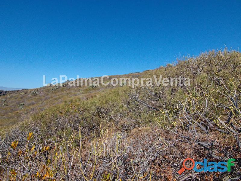 ID 424 Gran terreno en la zona noroeste de la isla de la Palma, en Lomada Grande Garafia, con una m 5