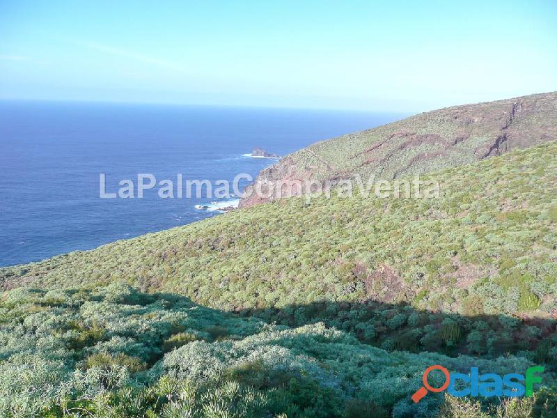 ID 424 Gran terreno en la zona noroeste de la isla de la Palma, en Lomada Grande Garafia, con una m 8
