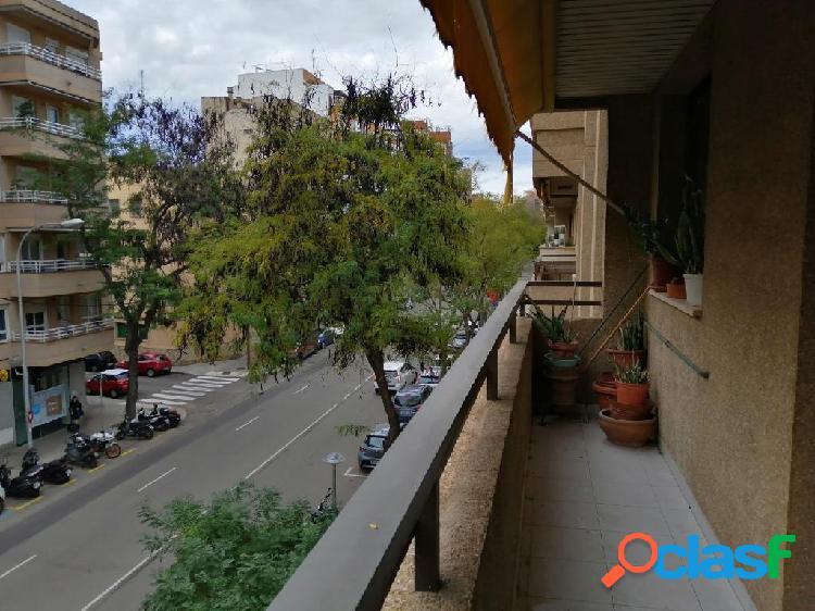 PISO DE 3 HABITACIONES en Avd. San Fernando - Palma 2
