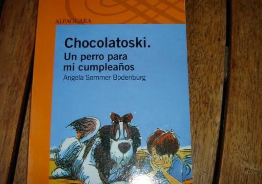 Chocolatoski. un perro para mi cumpleaños
